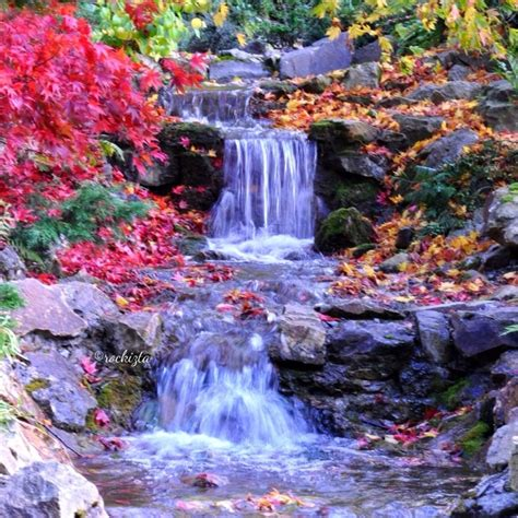 National Botanical Gardens National Botanical Gardens Dublin Ireland Nature Waterfall