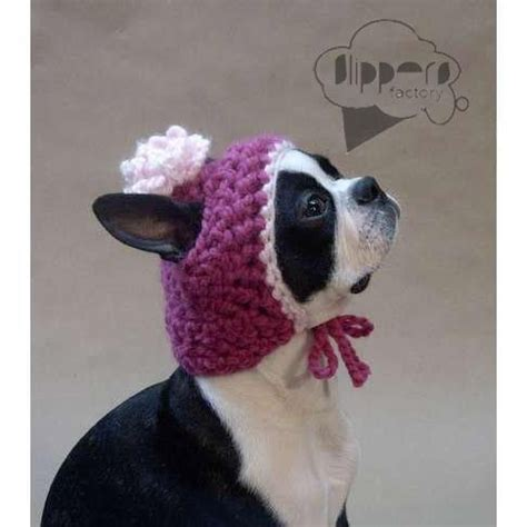 knitted hats for dogs knitted hat for dogs pets dogs world