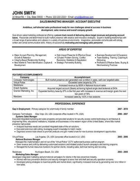 resume format for sales and marketing pdf 59 best best sales resume templates sles images on sales resume resume