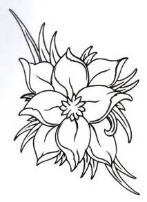 Flowers Drawings Outlines by Flower Outline Pictures Cliparts Co