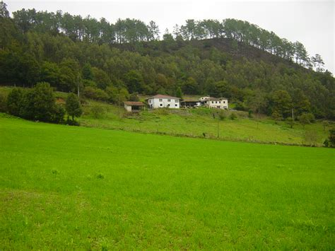 imagenes prados verdes la vida es un poema verdes prados