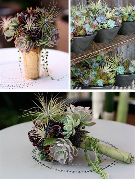 Memorable Wedding: Succulent Wedding Flowers   15 Reasons