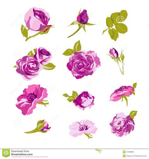 design elements flowers set of floral design elements flower collection stock