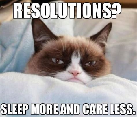 Happy New Year Cat Meme - happy new year from grumpy cat pictures to pin on