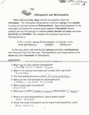 Chloroplasts And Mitochondria Worksheet Answers by Botany Botany Botany Murrah High School Page 1 Course