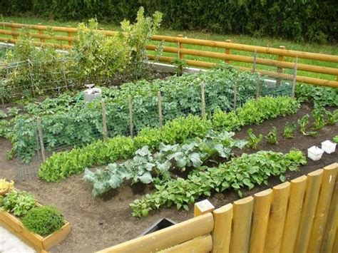terrace farming benefits of terrace farming