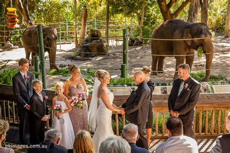 Wedding Ceremony Zoo ceremony locations perth zoo