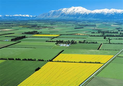 Interior Plains Agriculture New Zealand Parliament Votes To Extend Spying Powers