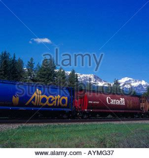 canadian pacific freight train travelling around morant's