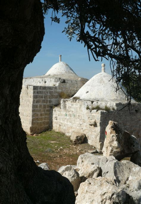 along with the gods village sufi trails in palestine friends of god the origins and