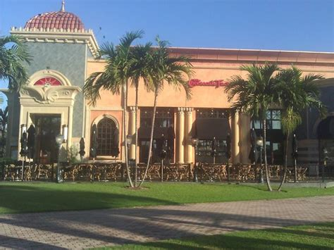 The Cheesecake Factory Palm Gardens Fl by Chicken And Shrimp Coconut Curry Picture Of The