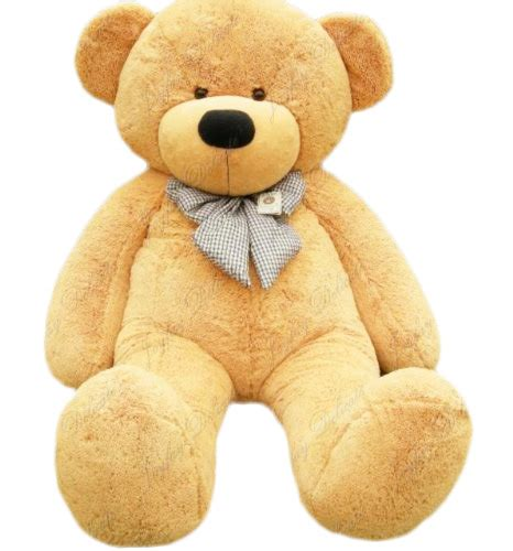 large teddy bears teddy bears with quotes quotesgram