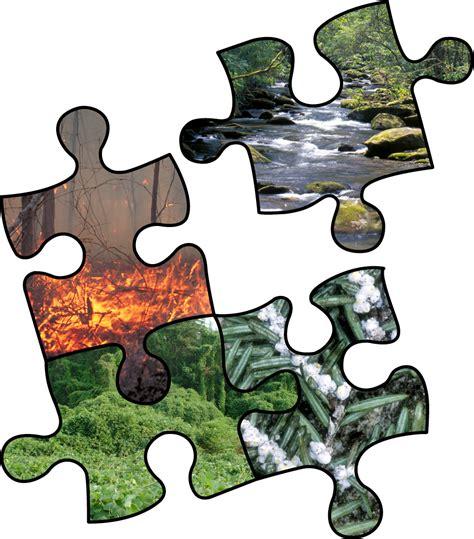 comparative risk assessment framework and tools craft