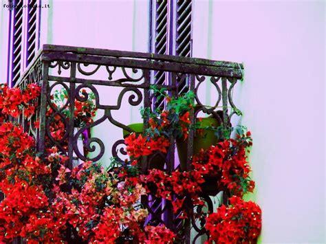 il balcone fiorito balcone fiorito