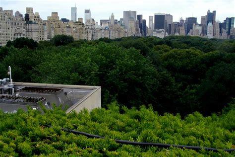 roof garden metropolitan museum of roof garden metropolitan museum of 1000 fifth avenue