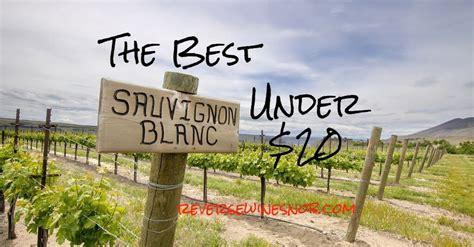 the best sauvignon blanc the best sauvignon blanc the wine snob picks