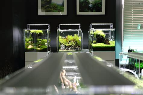 led light color for planted tanks cherry shrimp