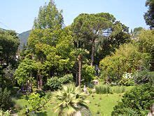 giardino botanico montecarlo andr 233 heller