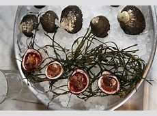 Blood Clams: Worth a Second Look - The New York Times Jumbo Shells