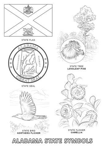 alabama state symbols coloring page state symbols