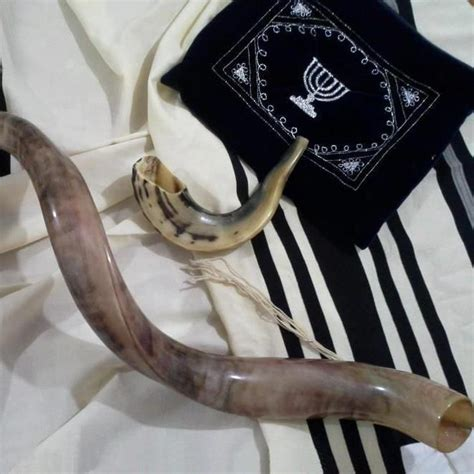 best shofar 83 best shofar images on holy land israel and