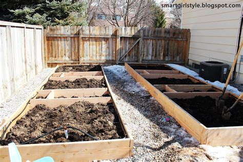 Box Vegetable Garden Smartgirlstyle Box Vegetable Garden The Early Stages