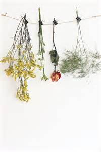 Dry Flowers Decoration For Home by Natural Home Decor Drying Flowers Crafts Art