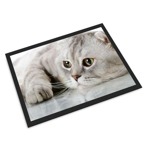 What Is Cat And Mat by Pet Mats Personalised With Photos And Text By Bags Of