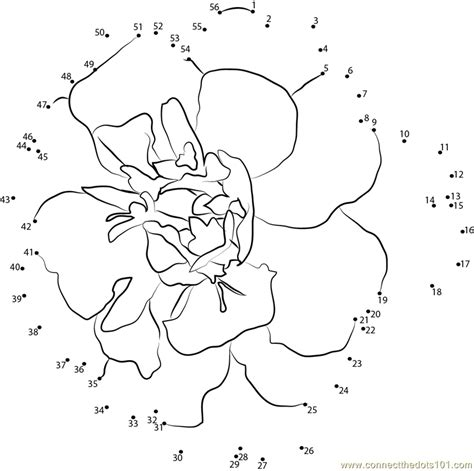 mari the marigold coloring page coloring pages