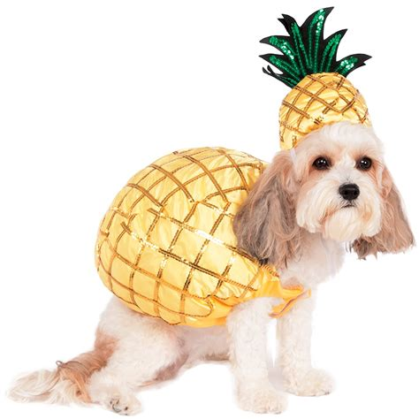 pineapple for dogs 8 must haves for dogs who want in on the pineapple craze sidewalk