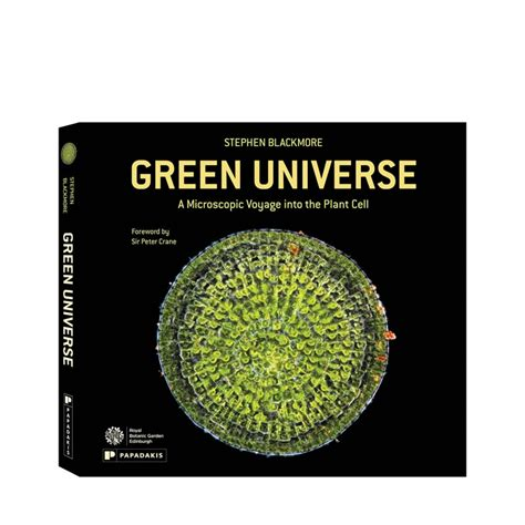the universe green door books pollen papadakis publisher
