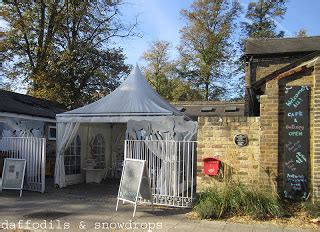 courtyard arts centre hertfords leading visual arts venue daffodils snowdrops love to visit courtyard arts