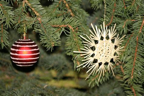 bilder vom weihnachtsbaum weihnachtsbaum bilder vom weihnachtsbaum im jahre 2006