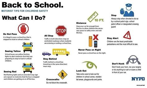 Aaa Background Check Process Useful Back To School Traffic Reminders From Nypd Back