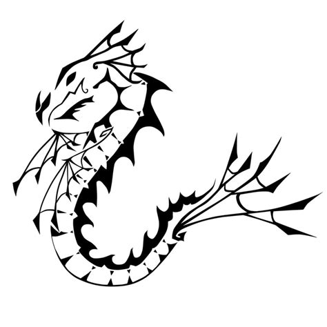 sea dragon drawing clipart best