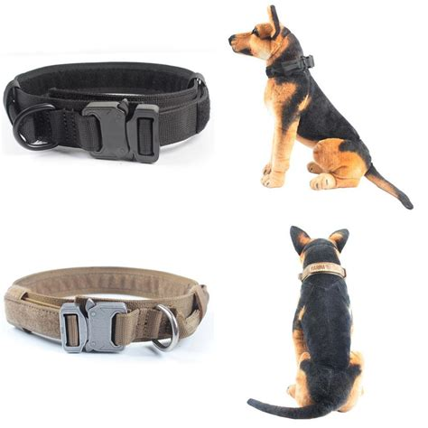 best collars for dogs best collars images