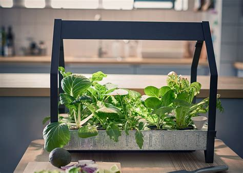 ikea vaxer hydroponic gardening made simple by ikea