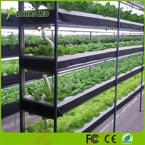 china  plant light  greenhouse gardening