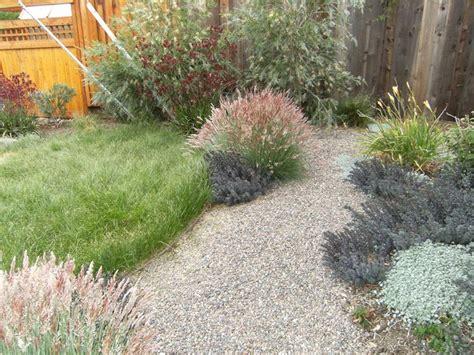 piccola area di terreno con erba e fiori prato alternativo speciali prato alternativo