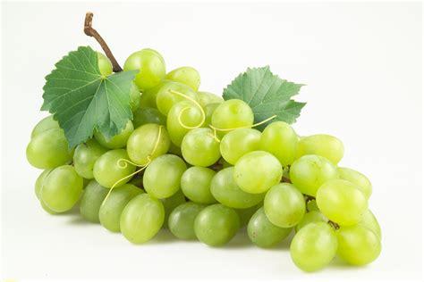 imagenes de uvas y frases propiedades y beneficios para la vista de la uva blanca