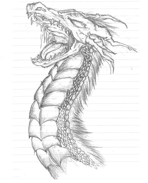 dragon head color coloring pages pinterest dragons