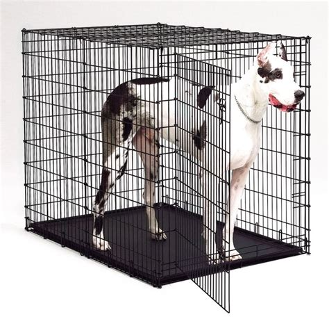 great dane crate crate for great danes