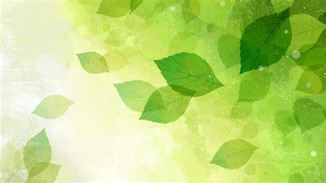 wall paper green leaves wallpaper wallpapersafari
