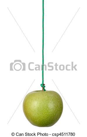 stock photography of apple on a string string with green
