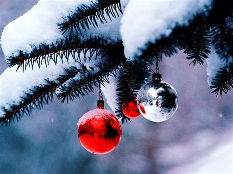 images of christmas snow christmas tree hd wallpapers hd wallpapers backgrounds