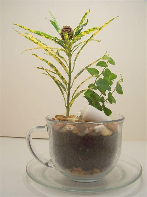 Garden Teapot Planter by 48 Best Images About Teacup Teapot Planters On