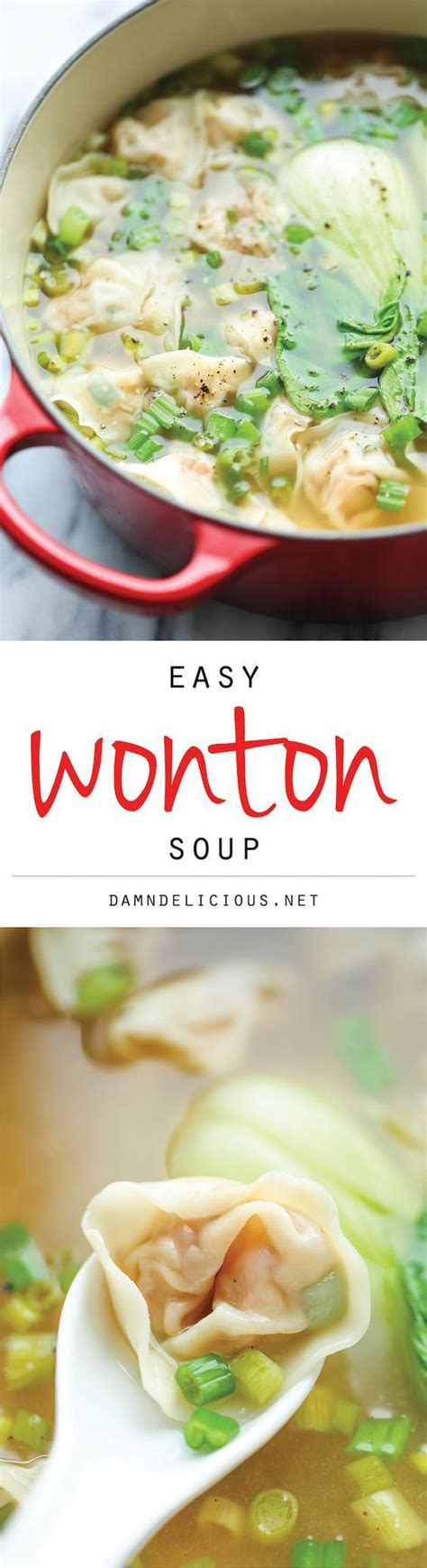 Damn Delicious Detox Chicken Soup by 100 Wonton Soup Recipes On Wontons Soup
