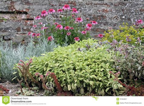Rock Garden Herbs Herbal Garden Bed Royalty Free Stock Photography Image 31952857