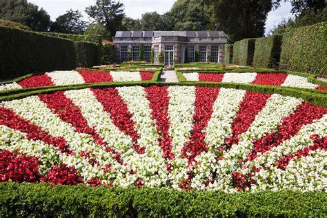 La Tulipe Contour images gratuites la nature herbe contour blanc