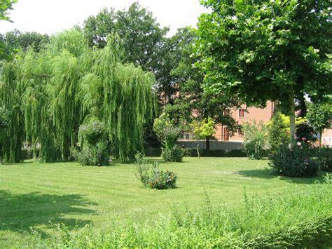 giardiniere roma giardiniere a roma servizi completi di giardinaggio